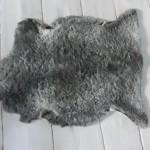 Ljusgrå, teddy (1300 kr) [SÅLT]